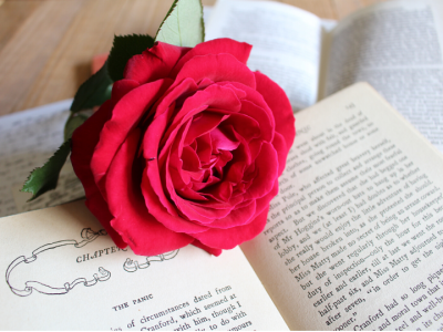 Rose on book