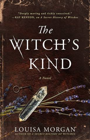 the witch's kind by louisa morgan books to read on the supernatural