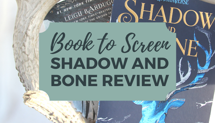 Blog cover photo with Shadow and Bone and Six of Crows books surrounded by antler